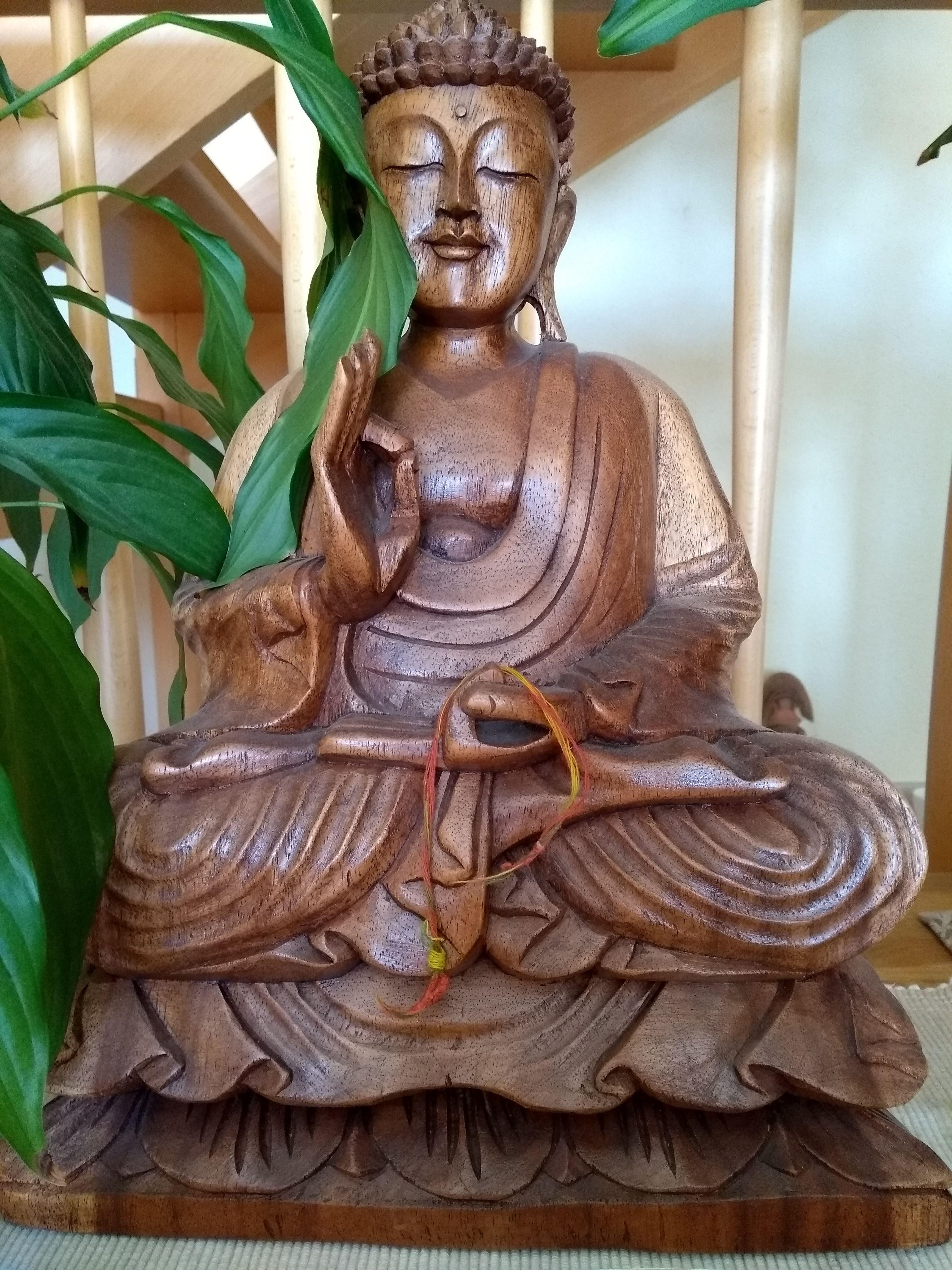 Bouddha_Swamiji